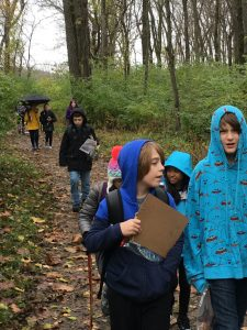 Students talk as they explore the woods.